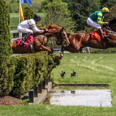 Horses jumping a hedge at the Gold Cup Steeplechase Race