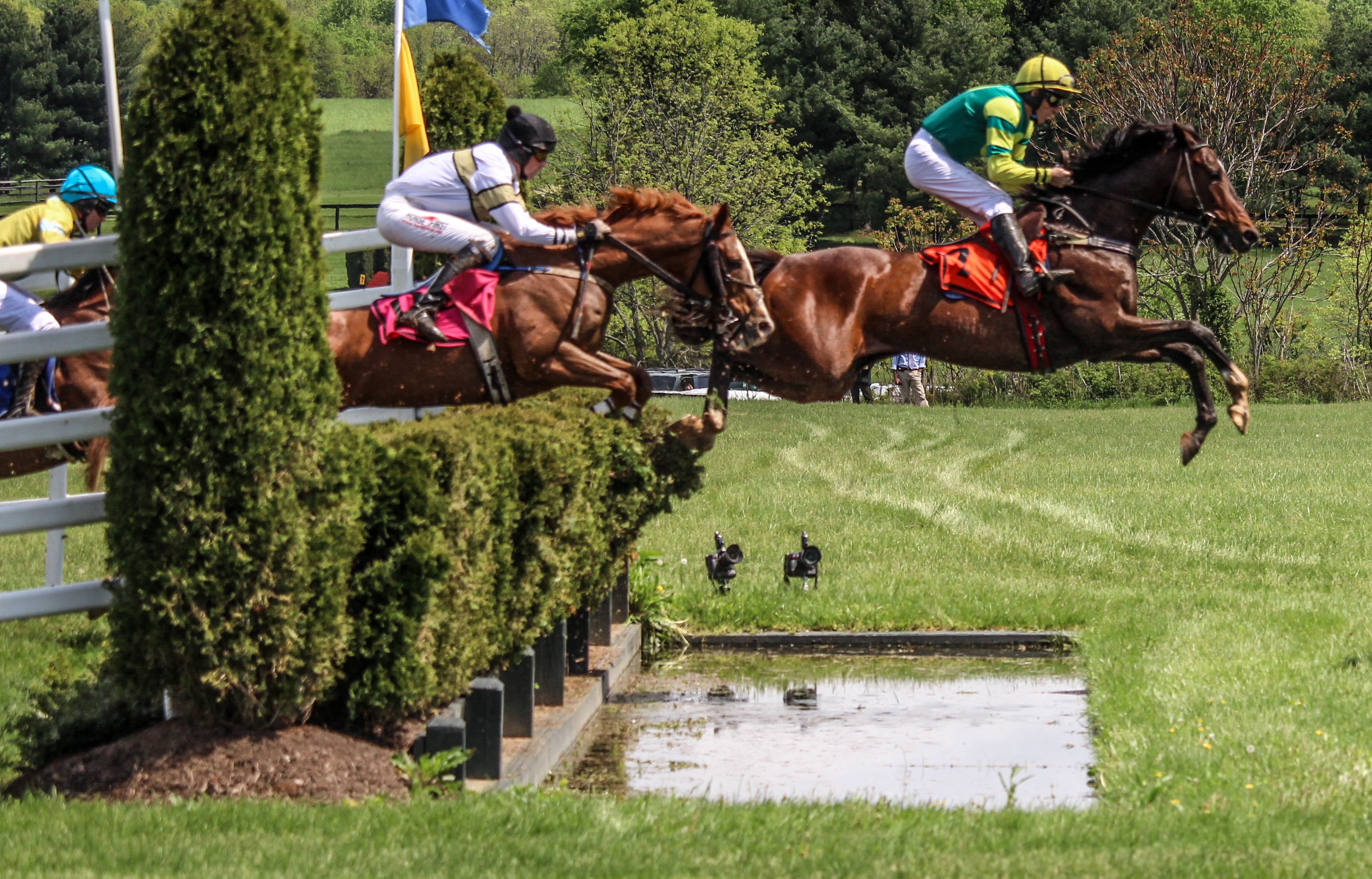 4 Traditions Not To Miss At The Virginia Gold Cup